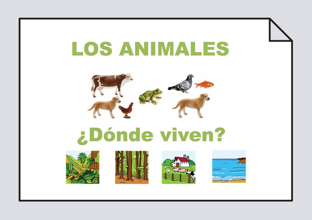 ¿Dónde vive? - Animales