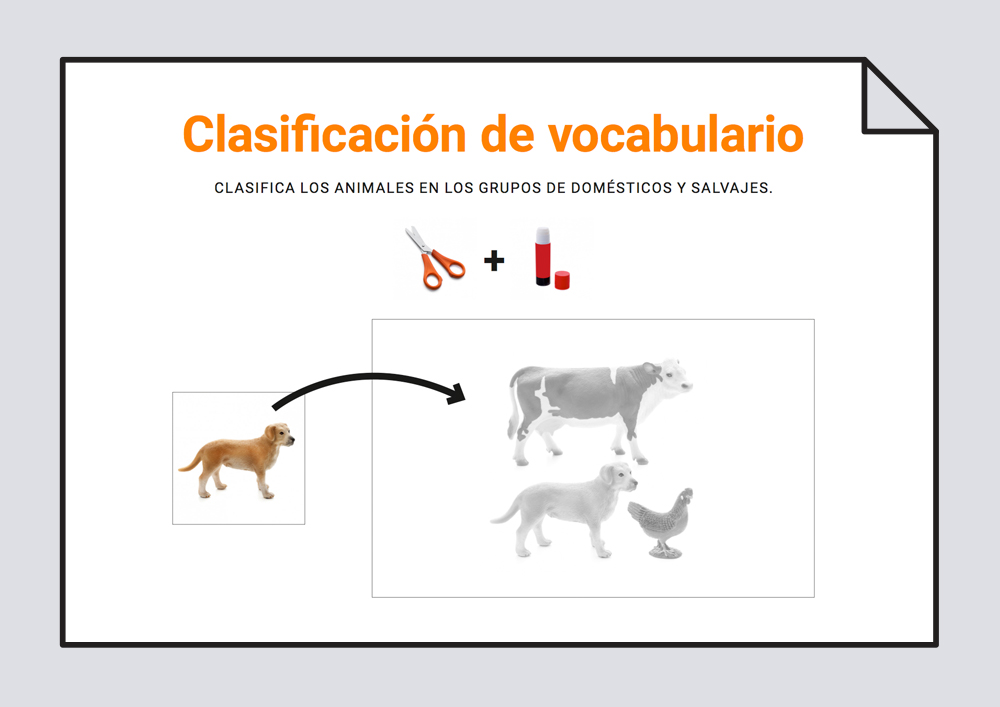 Clasificación de vocabulario. Animales