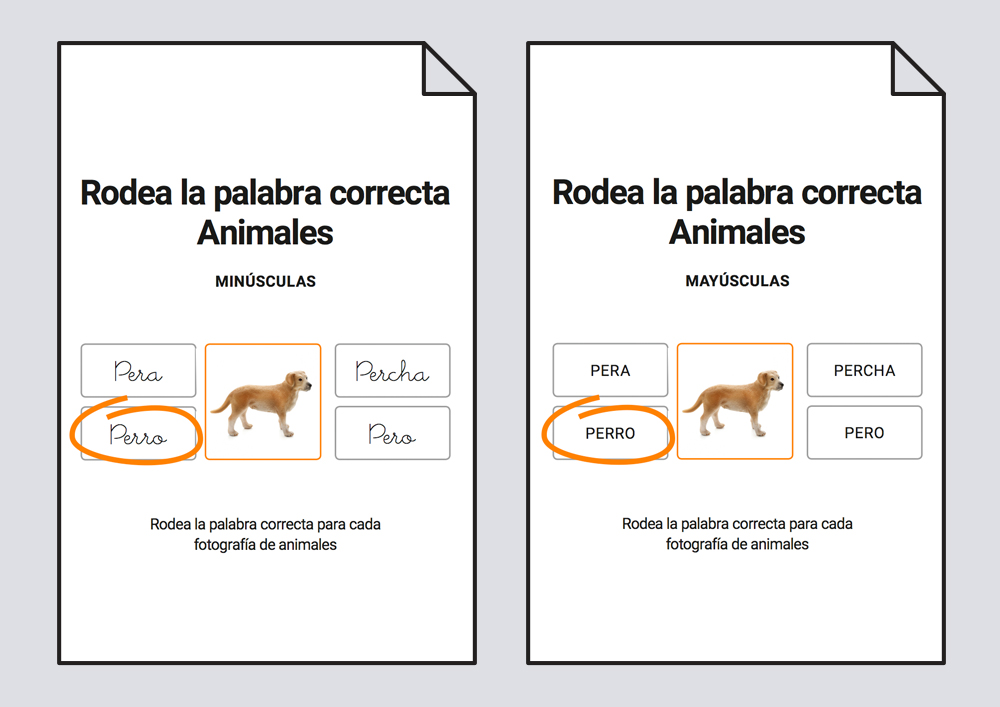 Rodea la palabra correcta - Animales