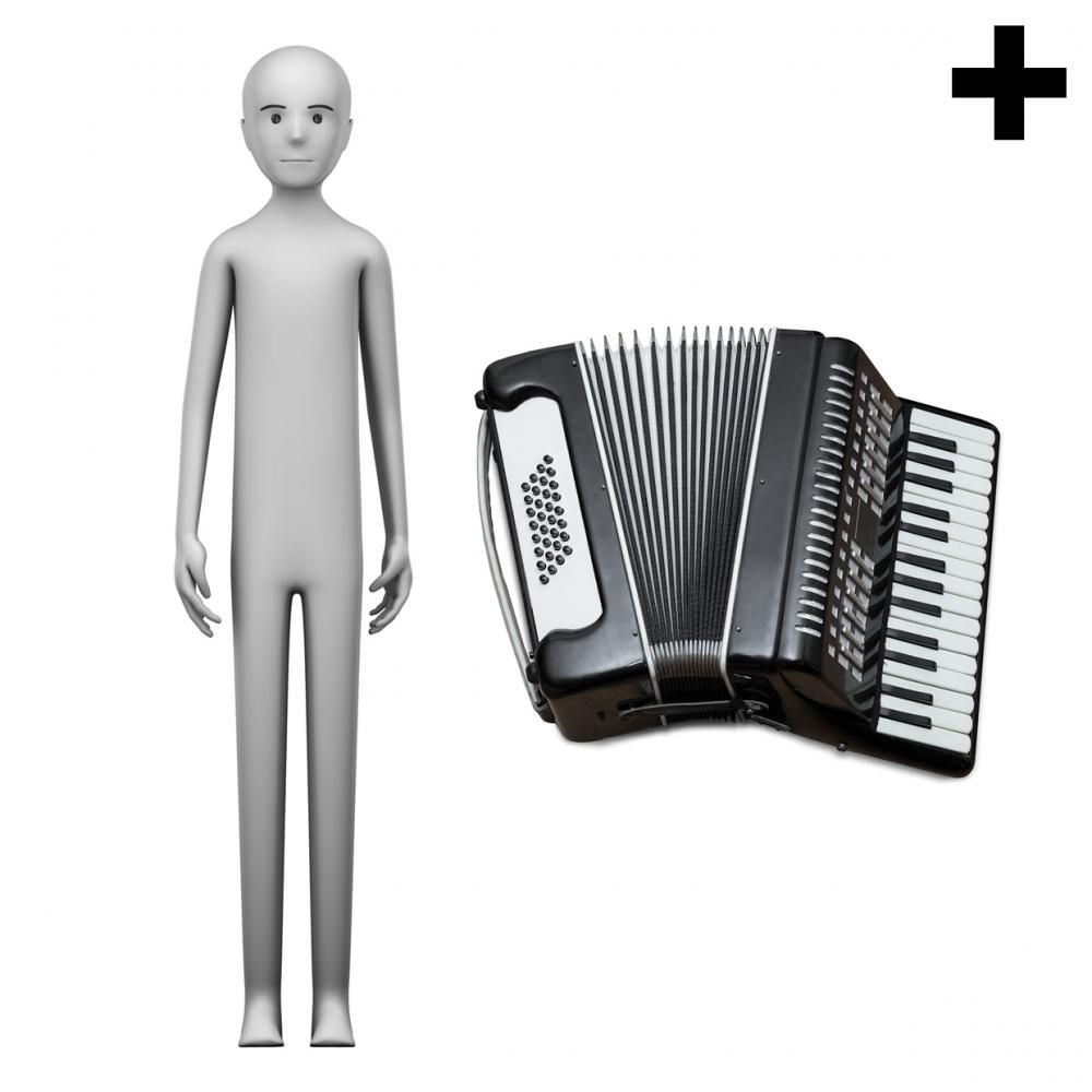 Imagen en la que se ve el plural del concepto acordeonista