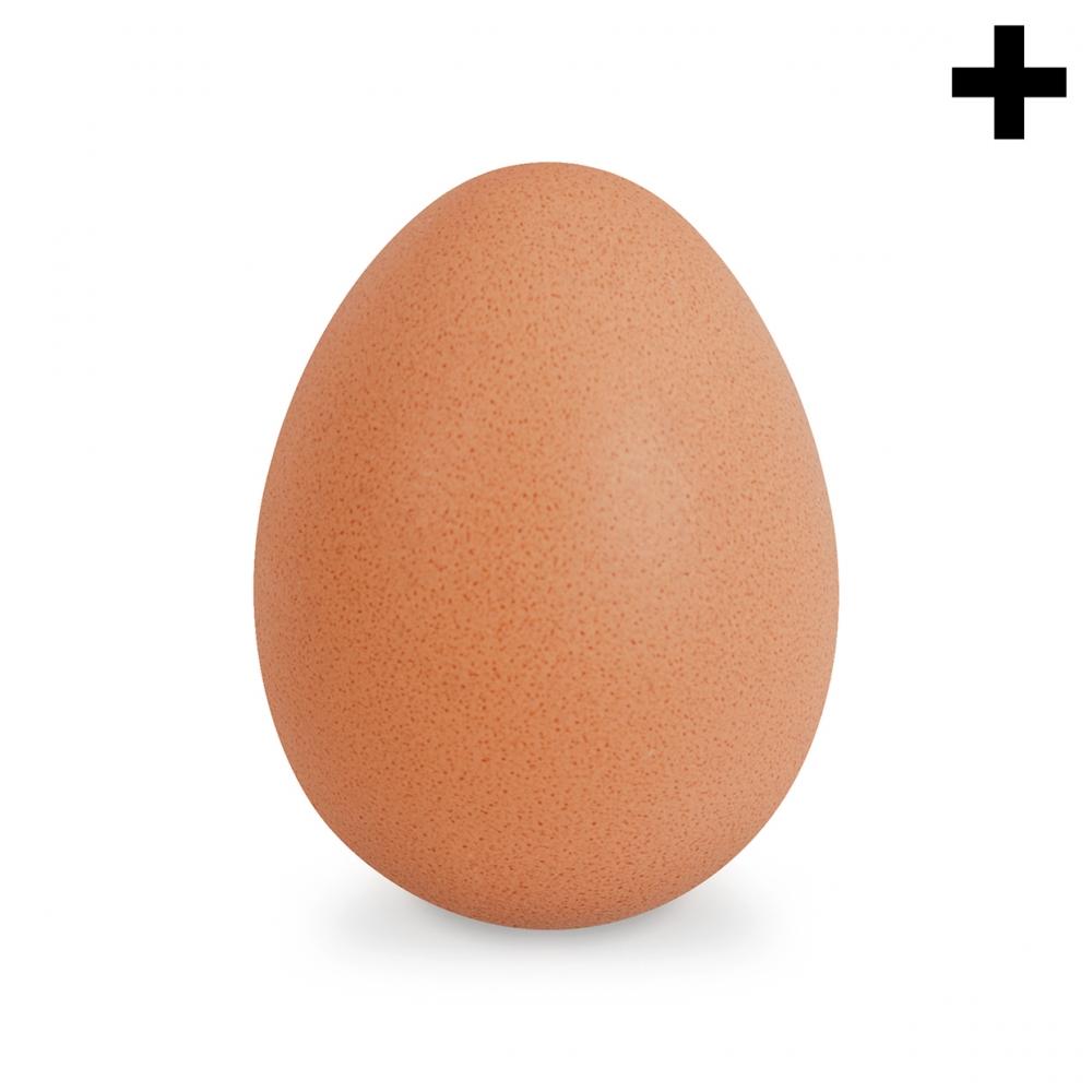 Imagen en la que se ve el plural del concepto huevo