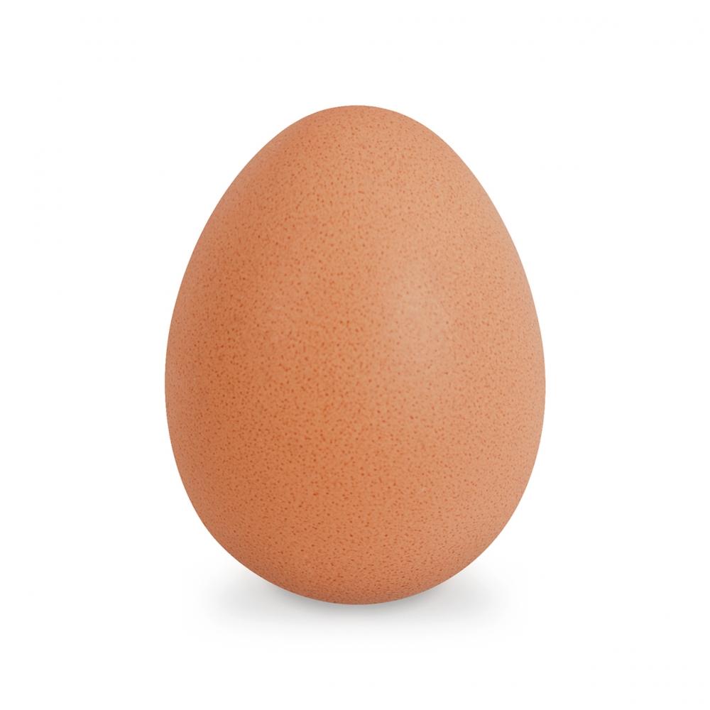 Imagen en la que se ve un huevo
