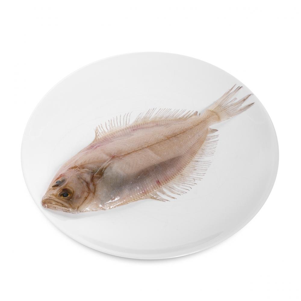Imagen en la que se ve un plato con un gallo pescado