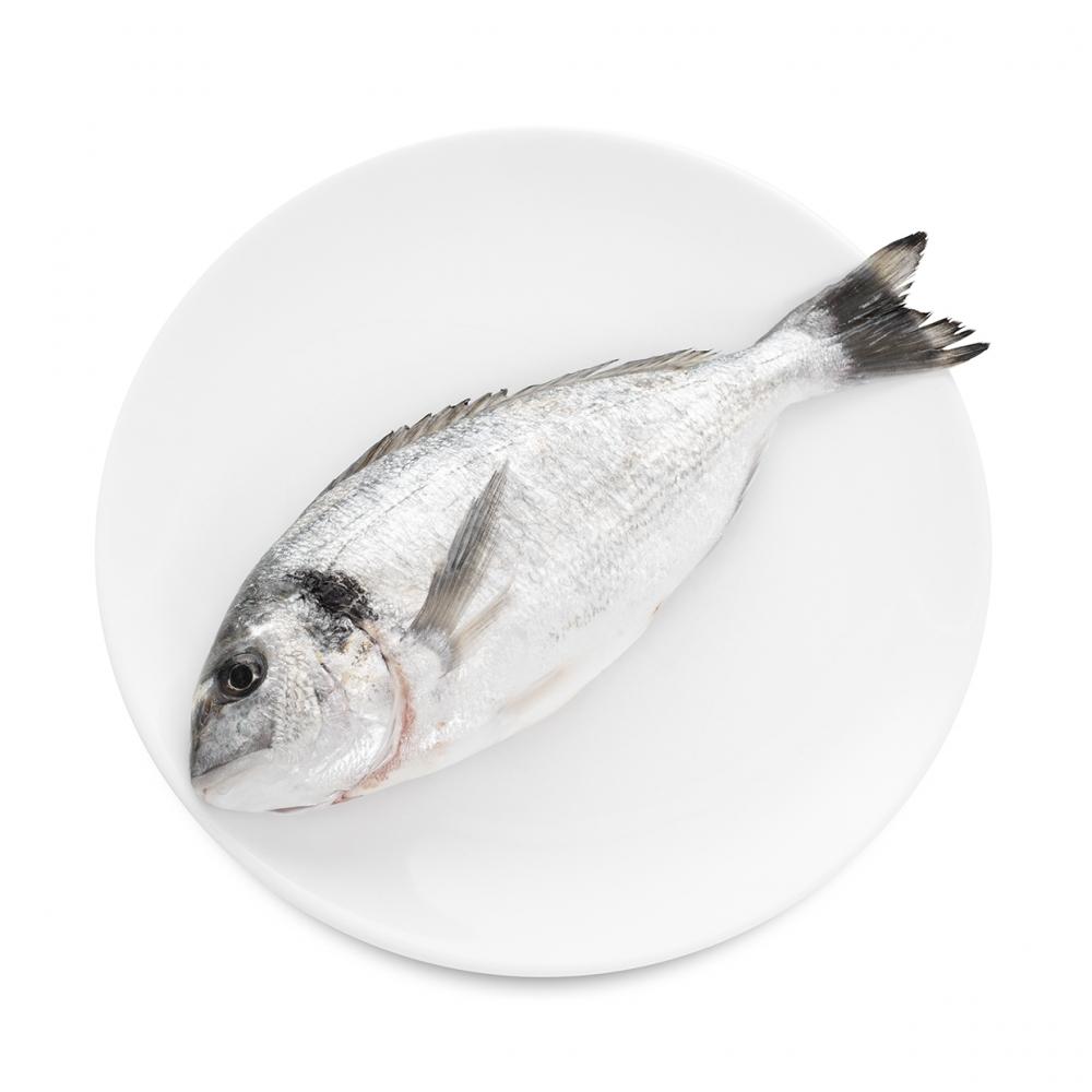 Imagen en la que se ve un plato con una dorada