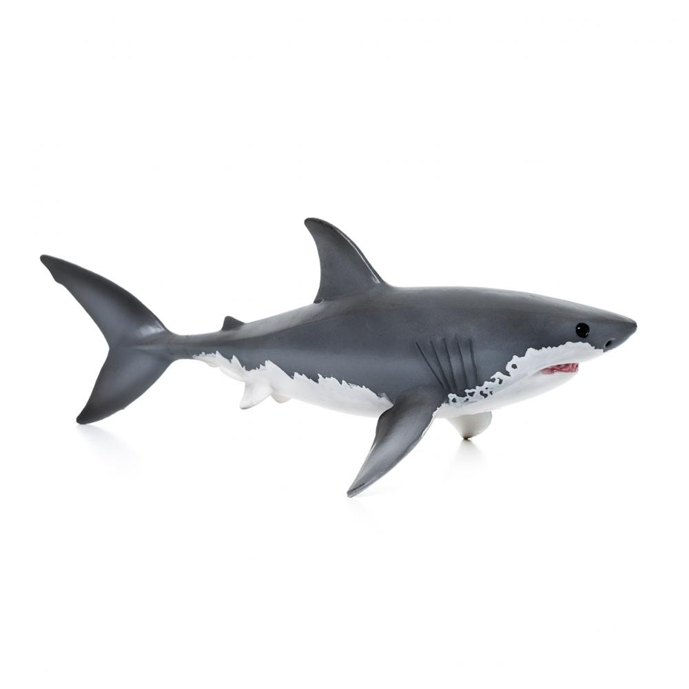 Imagen en la que se un tiburón en perspectiva lateral