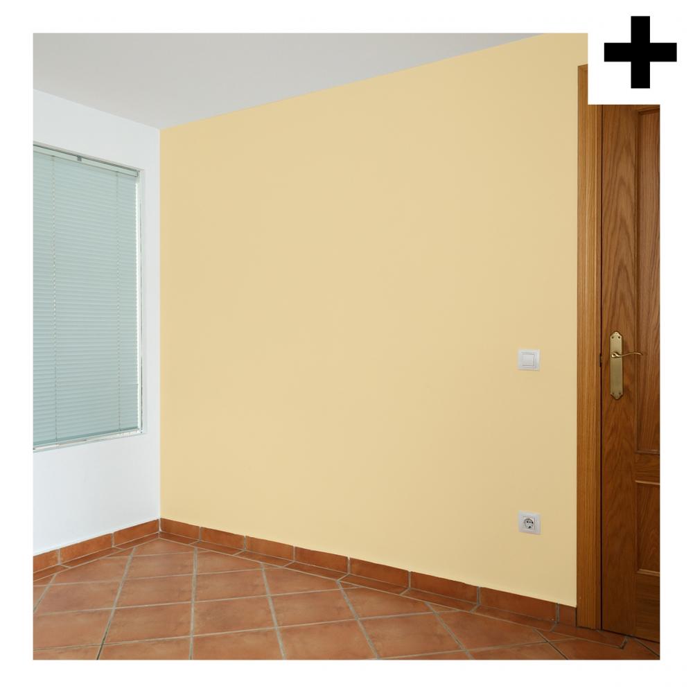 Imagen en la que se ve el plural del concepto pared
