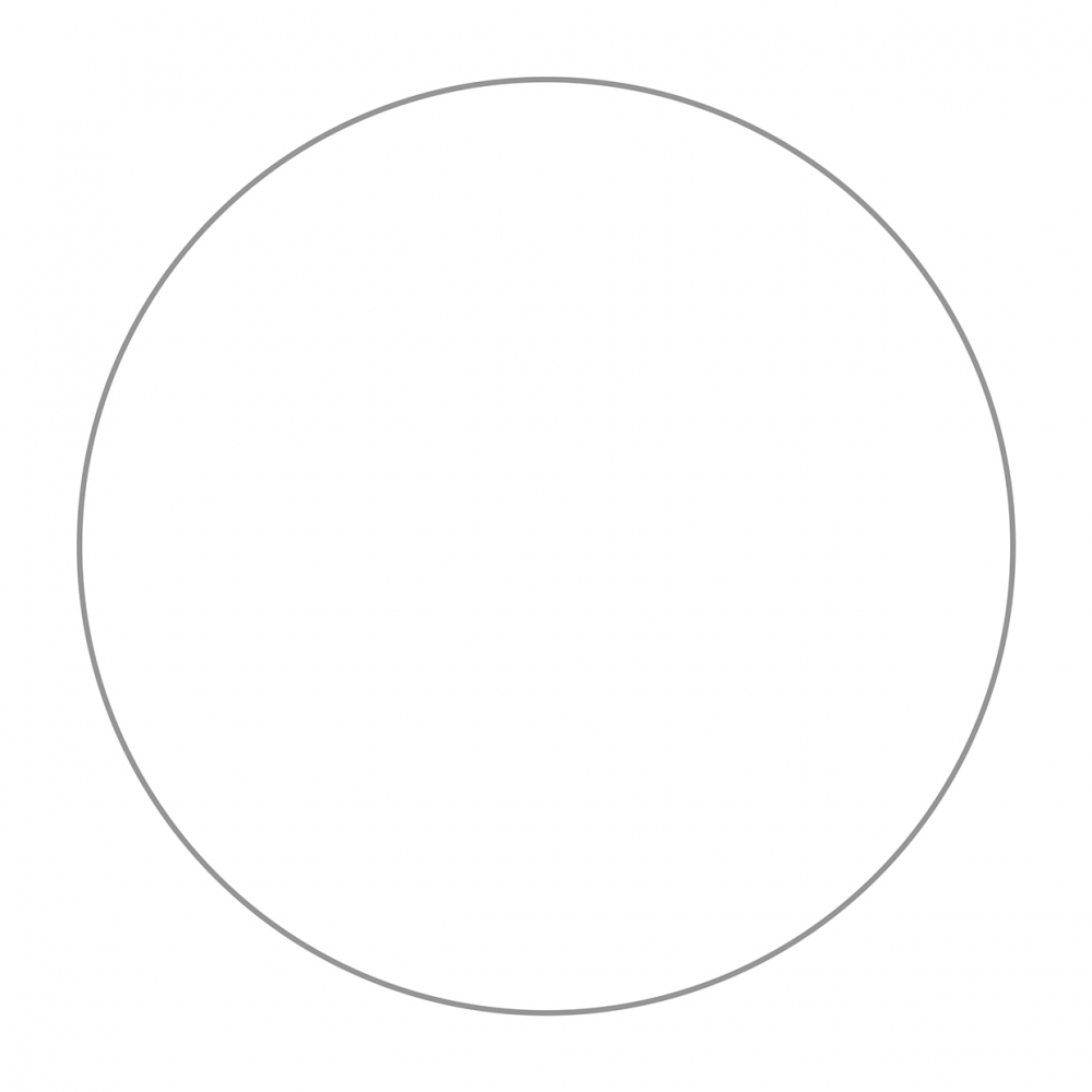 Imagen en la que se ve un círculo de color blanco