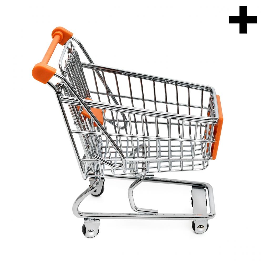 Imagen en la que se ve el plural del concepto carro de supermercado