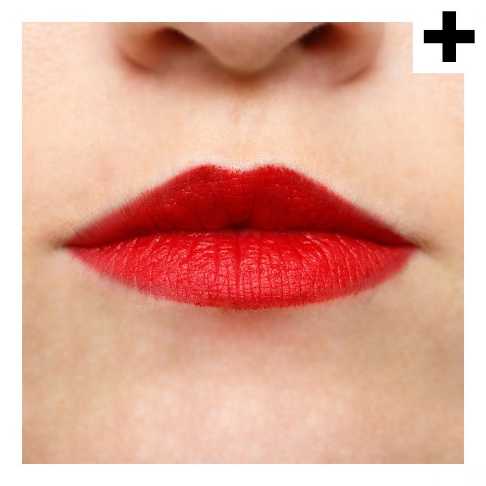 Imagen en la que se ve el plural del concepto labios