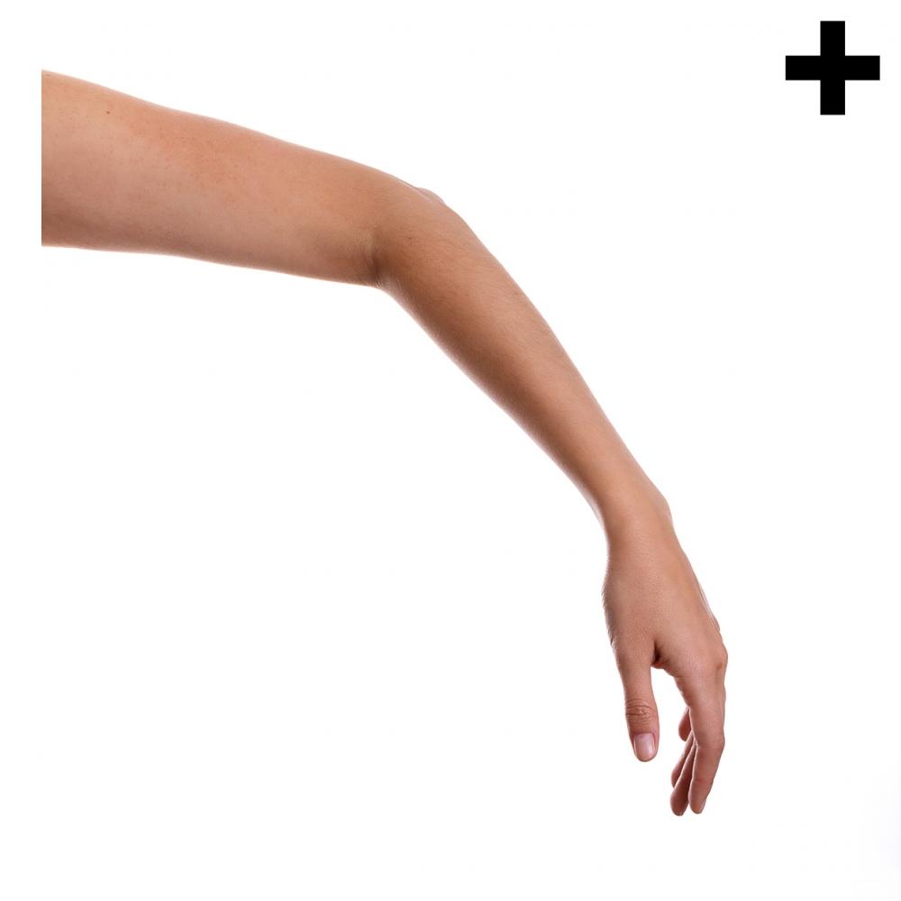 Imagen en la que se ve el plural del concepto brazo