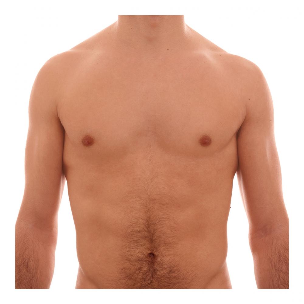 Imagen en la que se ve un torso humano