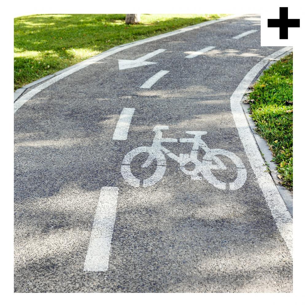Imagen en la que se ve el plural del concepto carril bici