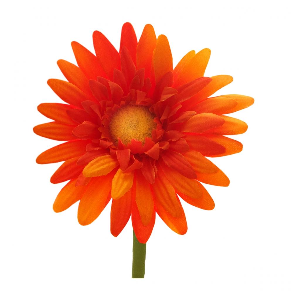 Imagen en la que se ve una flor de pétalos naranjas