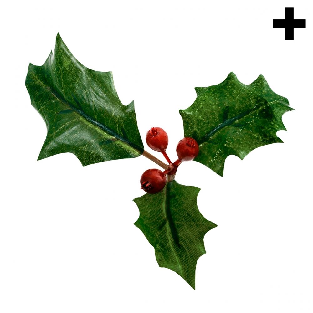 Imagen en la que se ve el plural del concepto acebo de Navidad