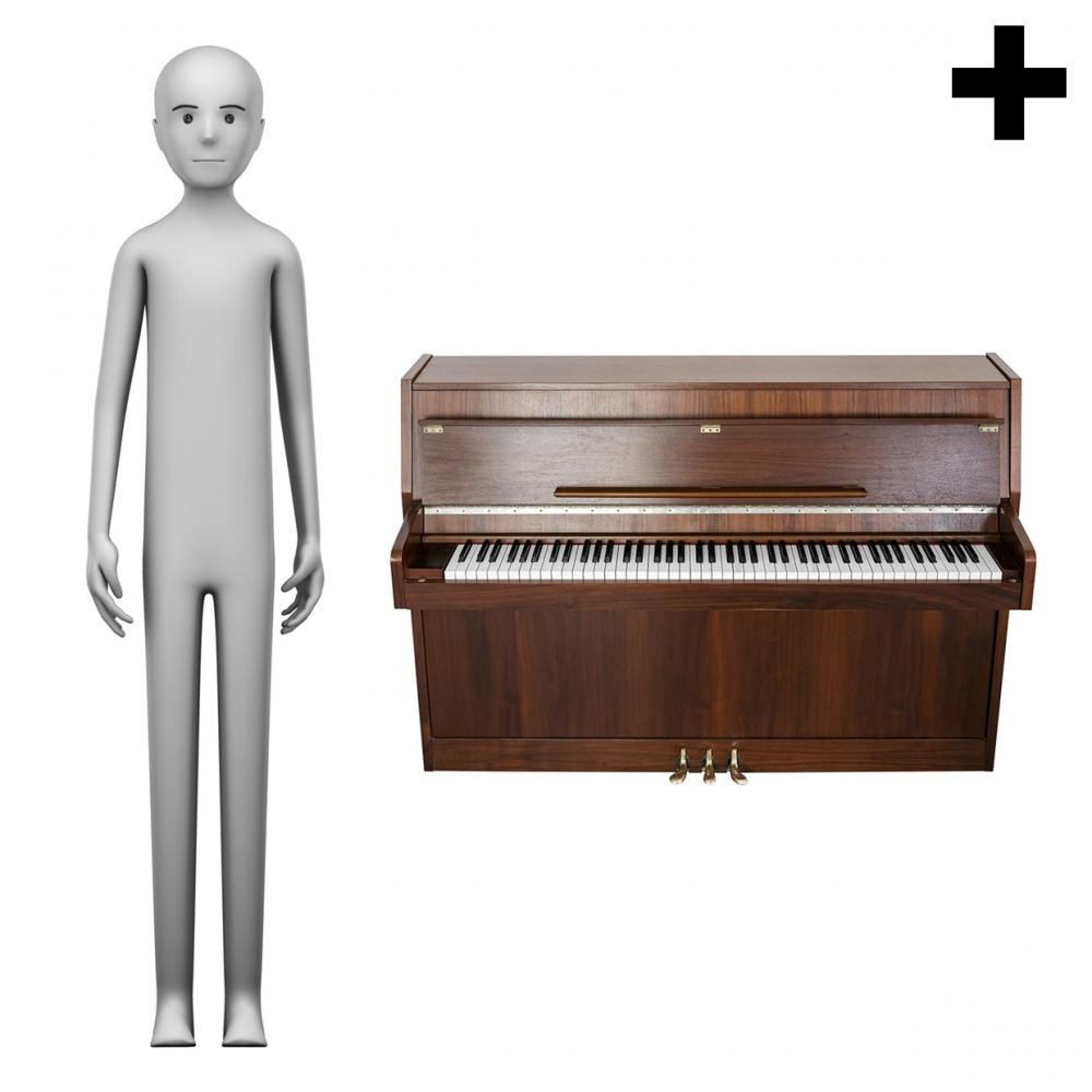 Imagen en la que se ve el plural del concepto pianista