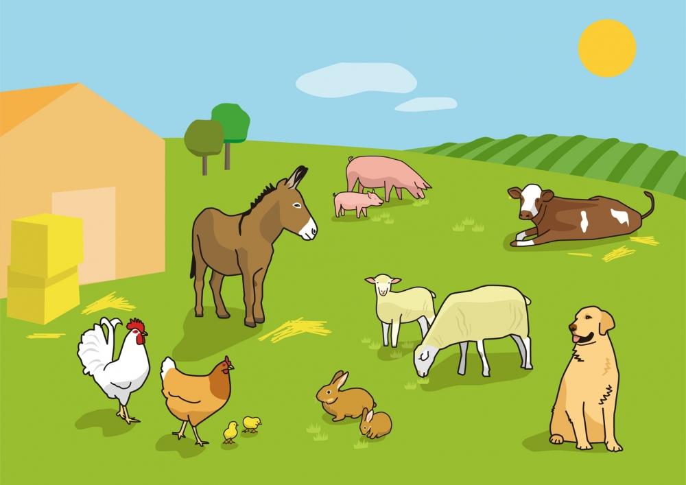 Escena en la que se ven varios animales domésticos