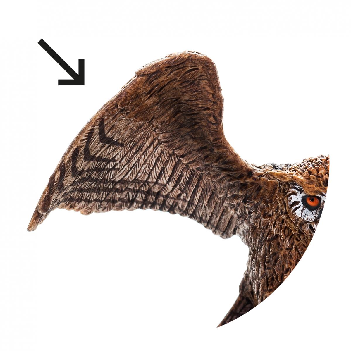 Imagen en la que se ve un ala de animal