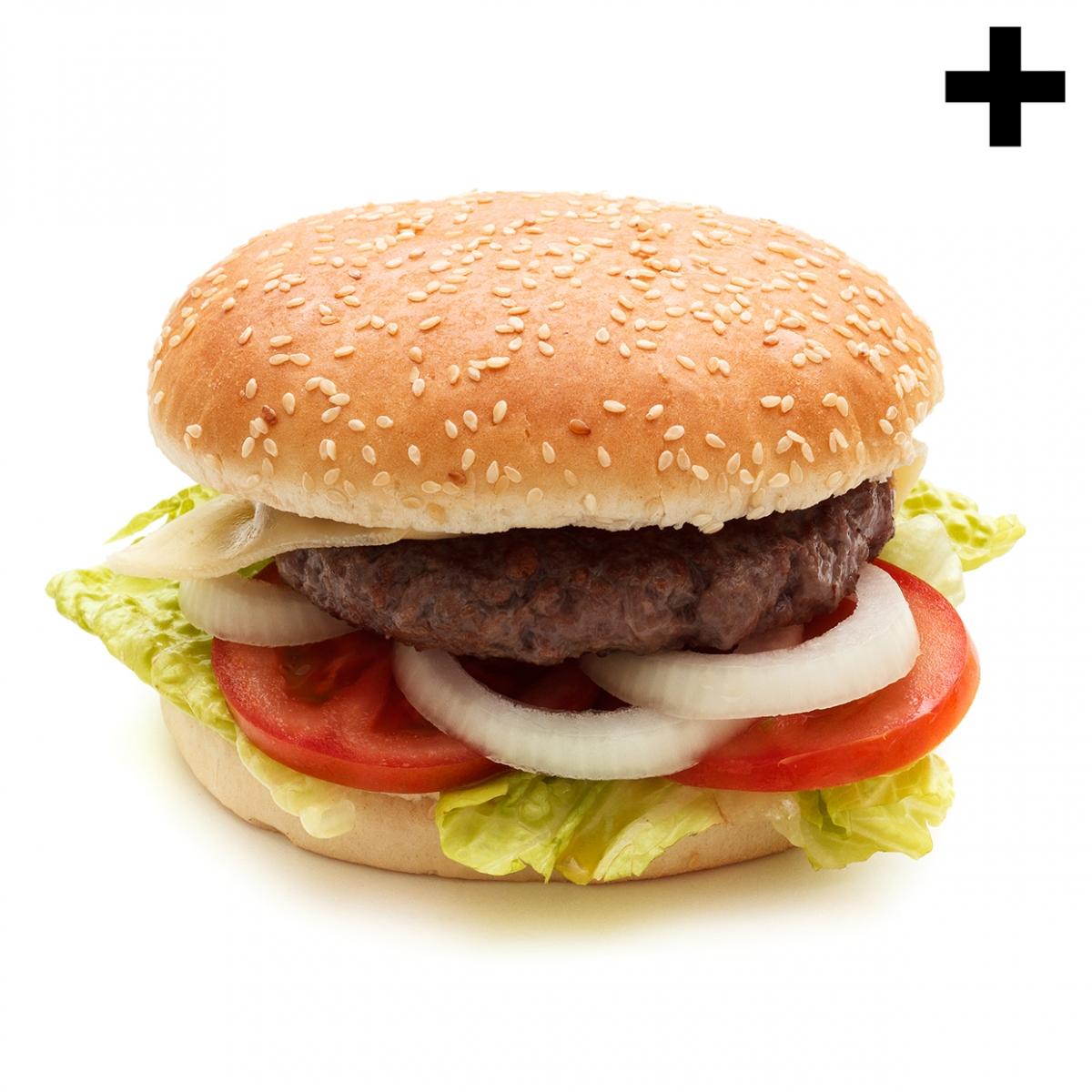 Imagen en la que se ve el plural del concepto hamburguesa