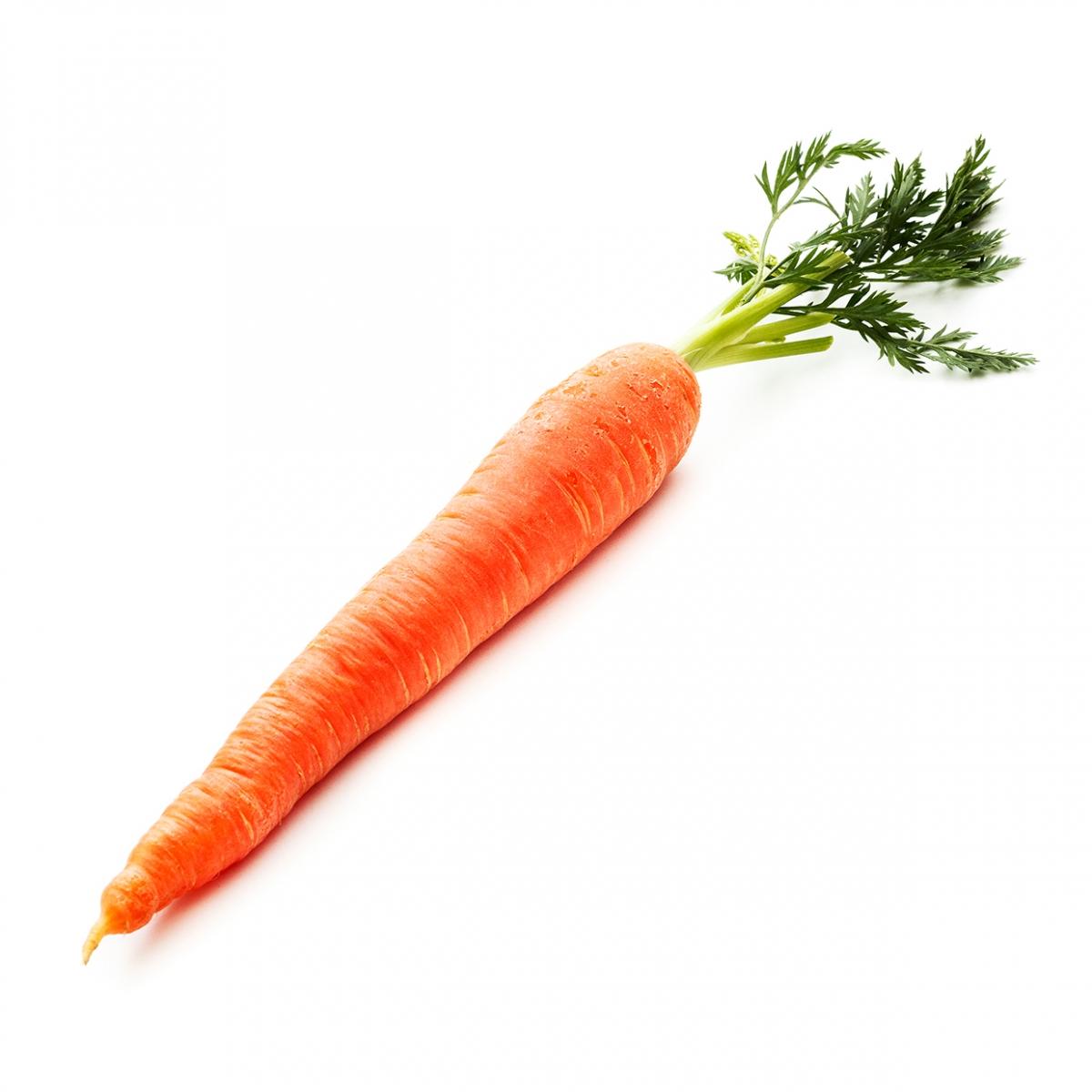 Imagen en la que se ve una zanahoria entera con las hojas verdes en la parte superior