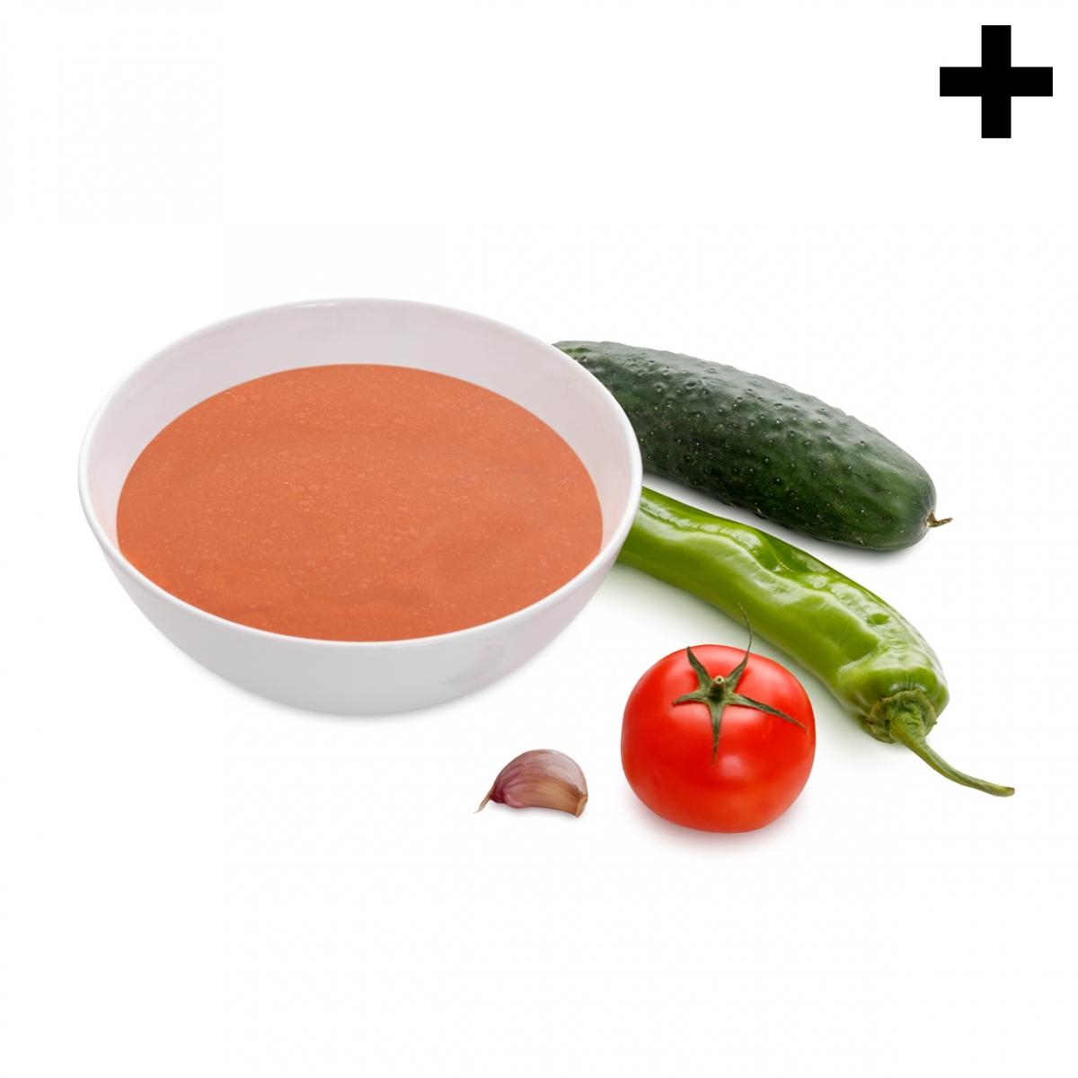 Imagen en la que se ve el plural del concepto gazpacho