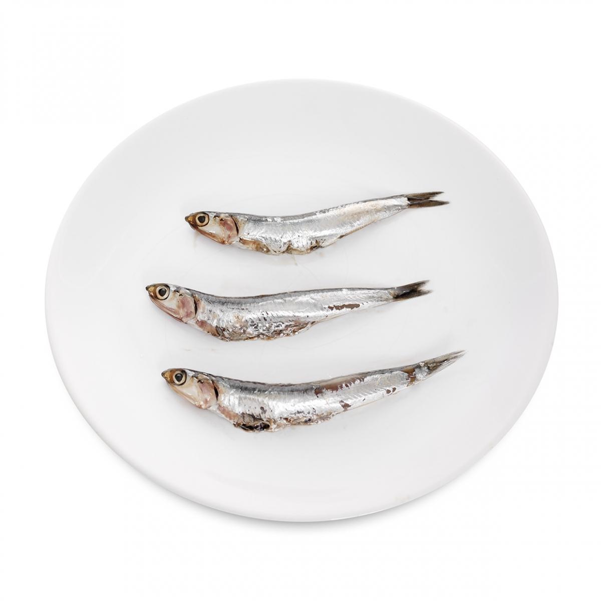 Imagen en la que se ve un plato de anchoas