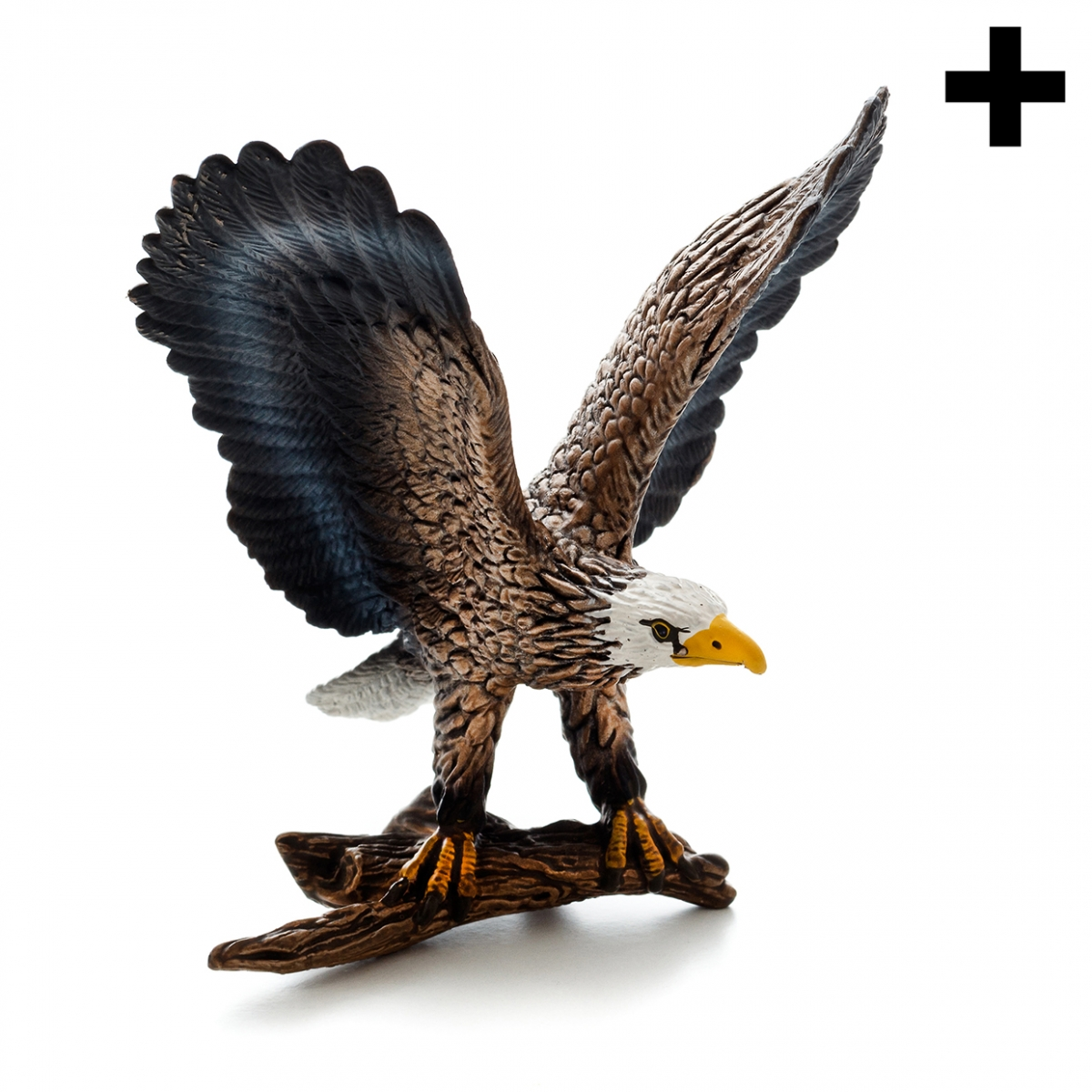 Imagen en la que se ve un águila posada sobre una rama
