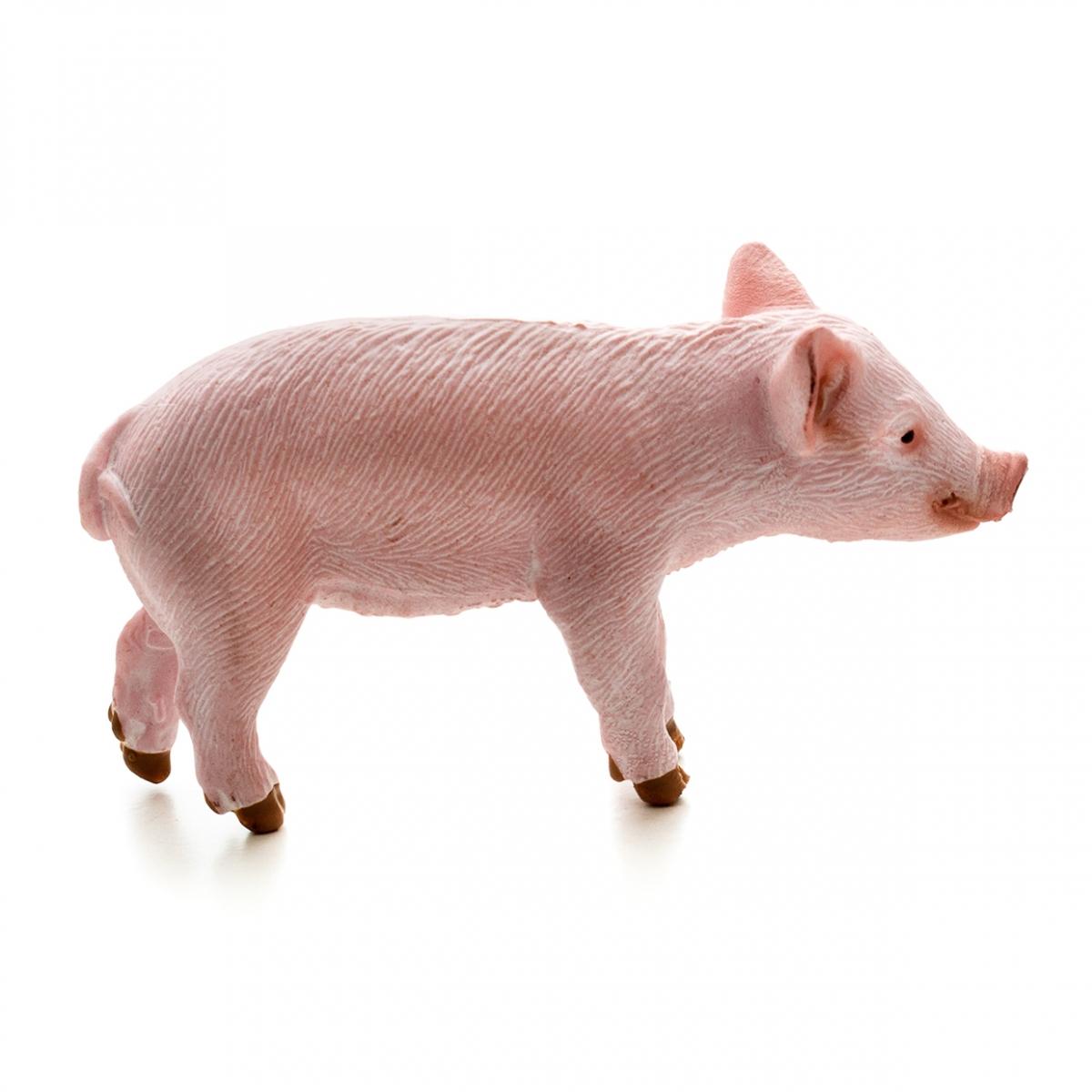 Imagen en la que se un cerdo en perspectiva lateral