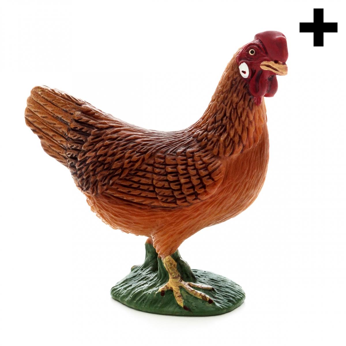 Imagen en la que se ve una gallina en perspectiva lateral