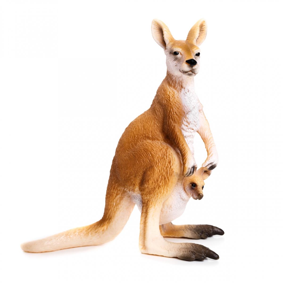 Imagen de un canguro