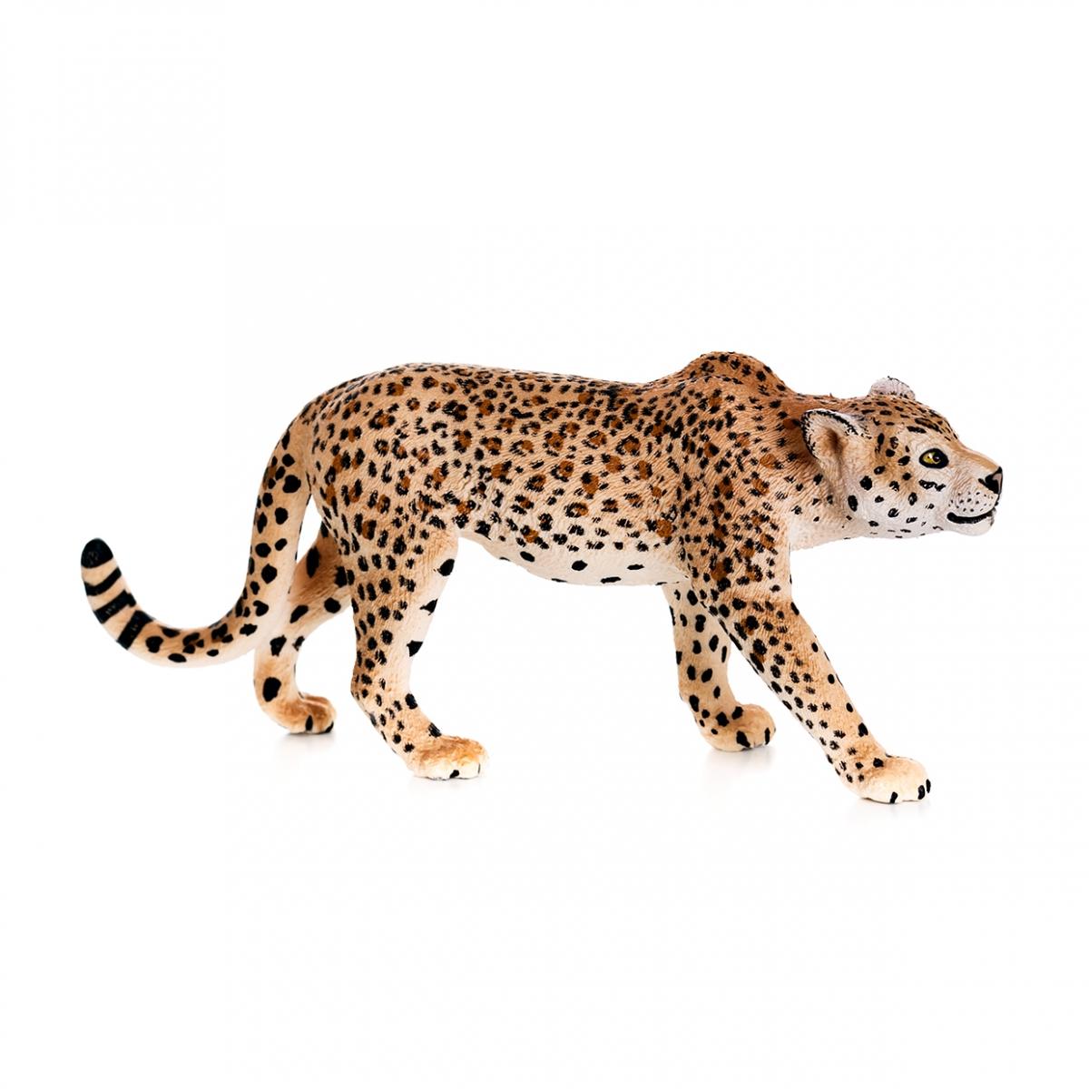 Imagen de un leopardo