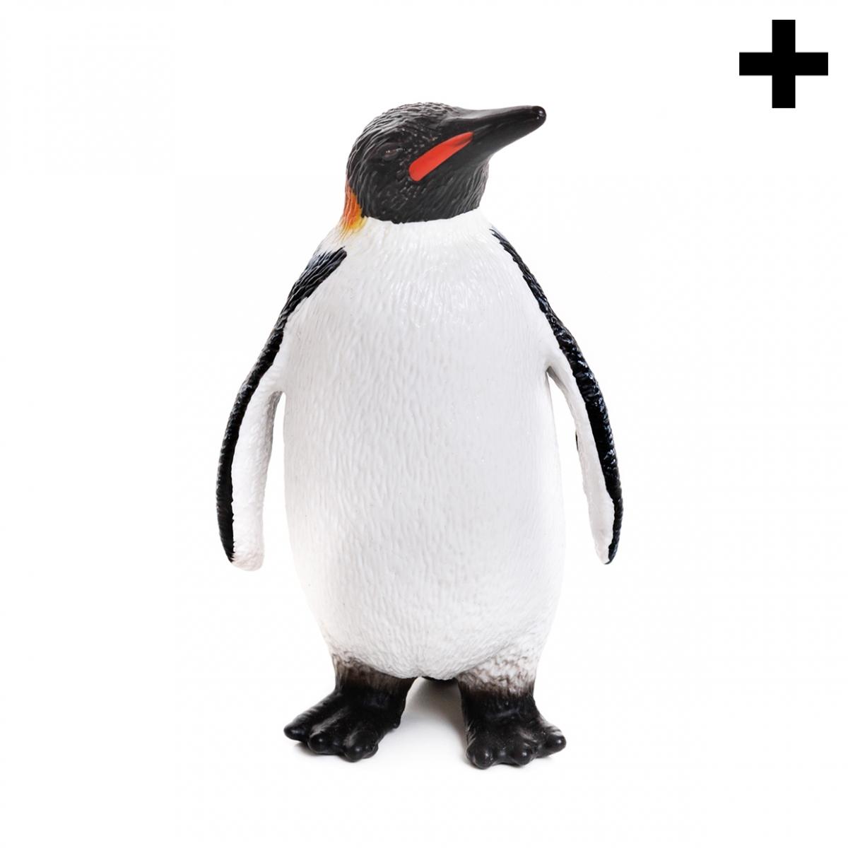 Imagen en la que se ve el plural del concepto pingüino