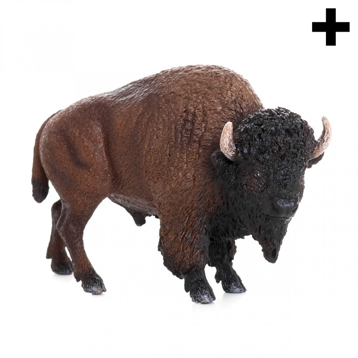 Imagen en la que se ve el plural del concepto bisonte