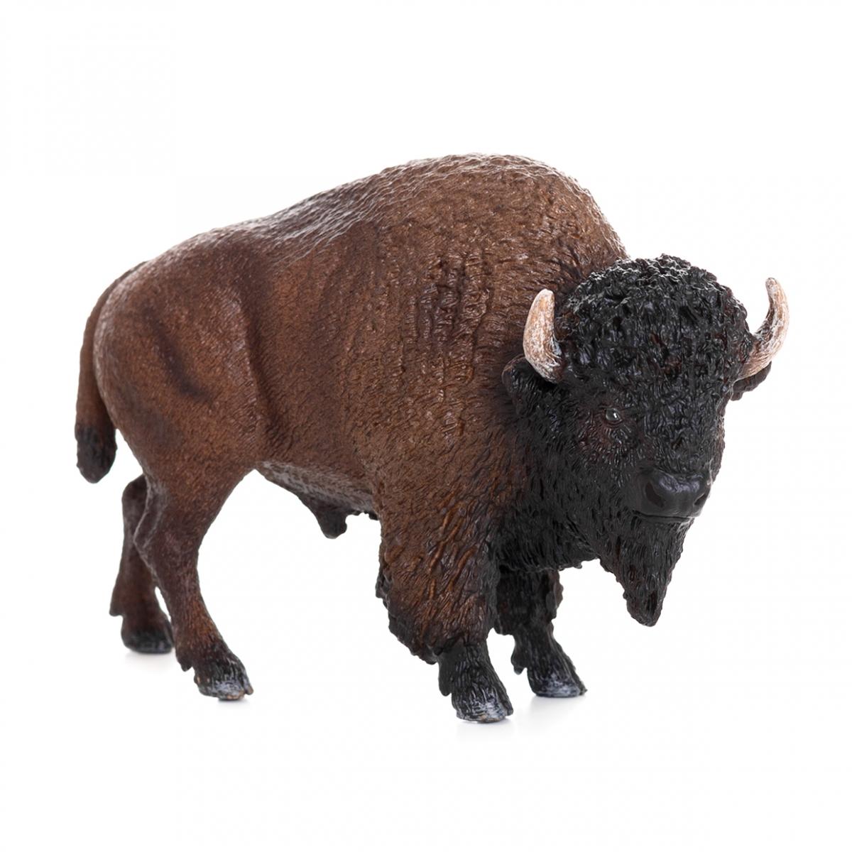 Imagen de un bisonte