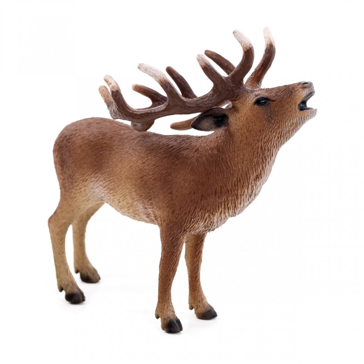 Imagen en la que se ve un ciervo