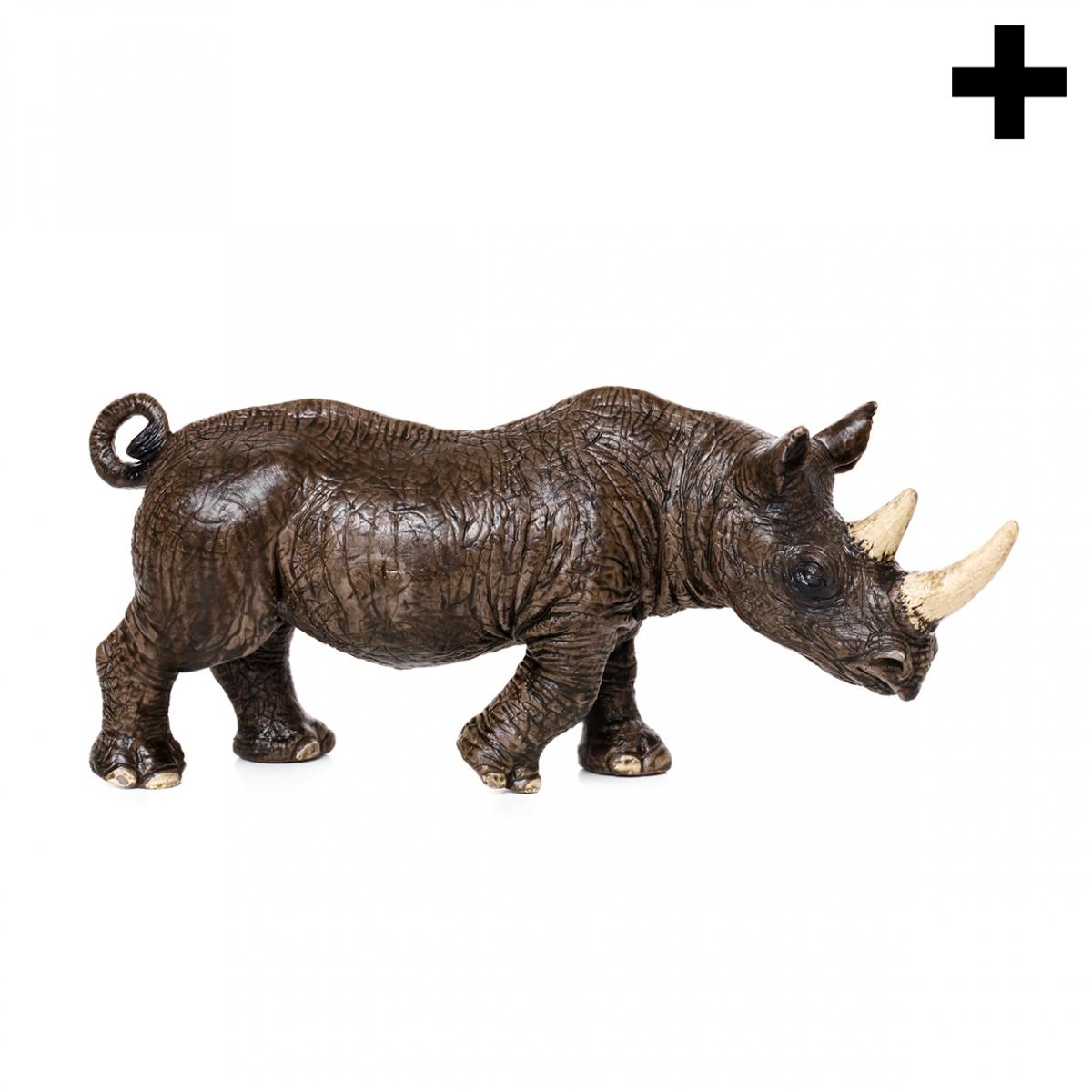 Imagen en la que se ve el plural del concepto rinoceronte