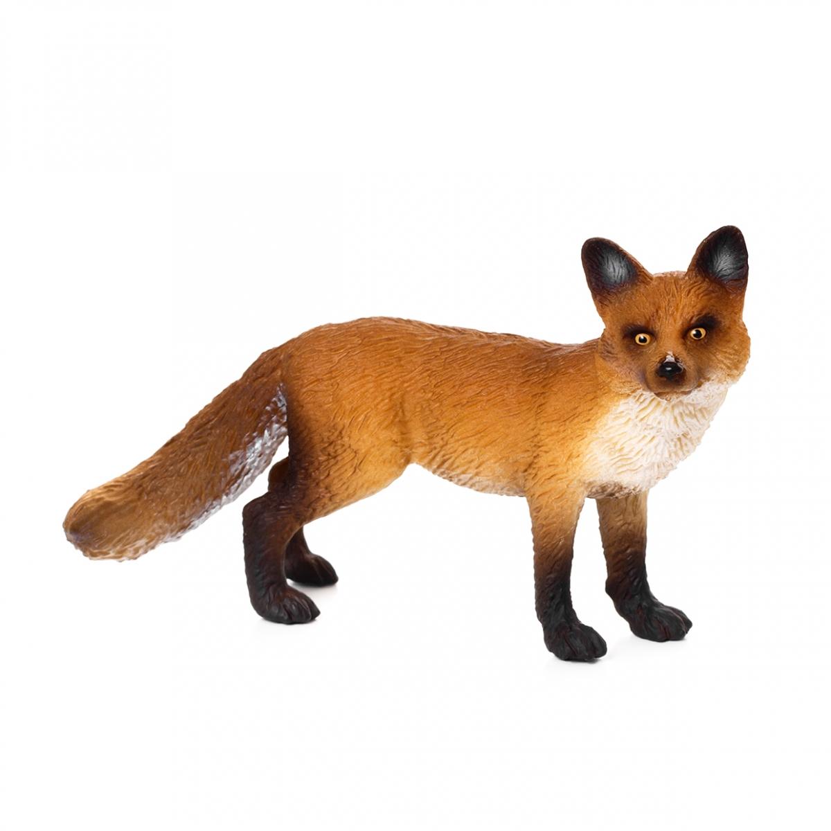 Imagen de un zorro