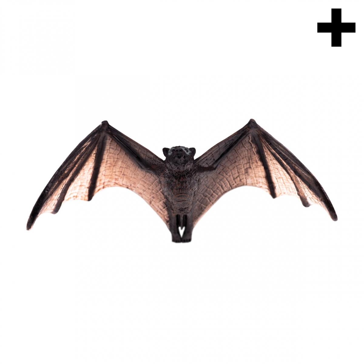 Imagen en la que se ve el plural del concepto murciélago