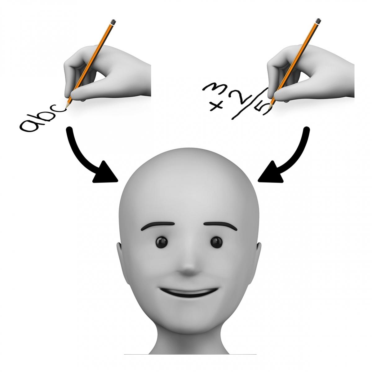 Imagen del verbo aprender