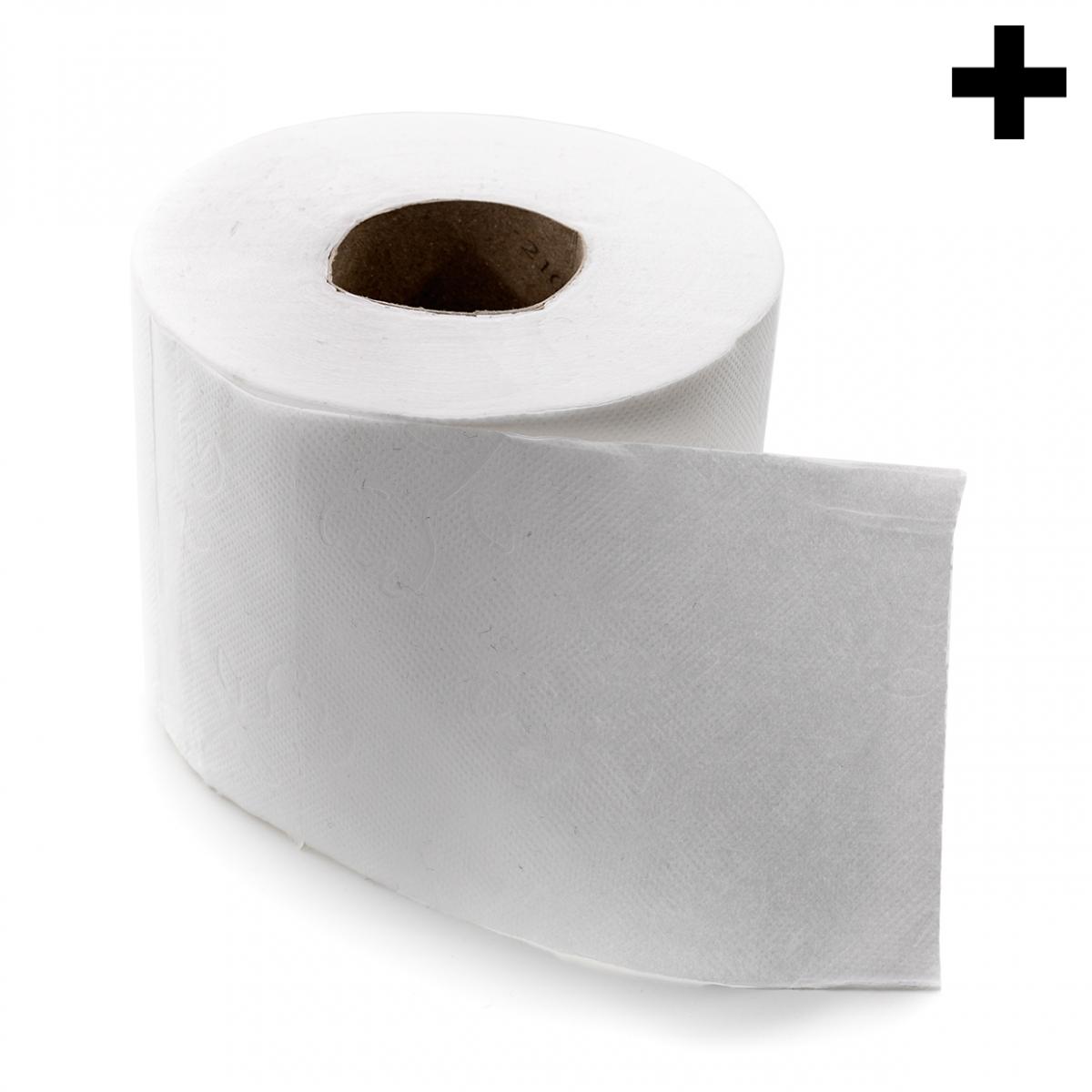 Imagen en la que se ve el plural del concepto rollo de papel higiénico