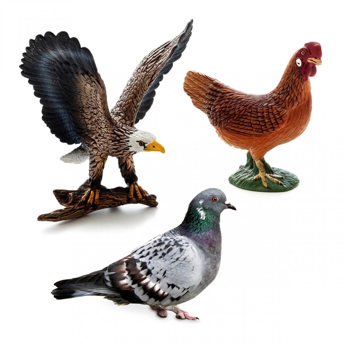 Imagen en la que se ven tres aves: un águila, una paloma y una gallina