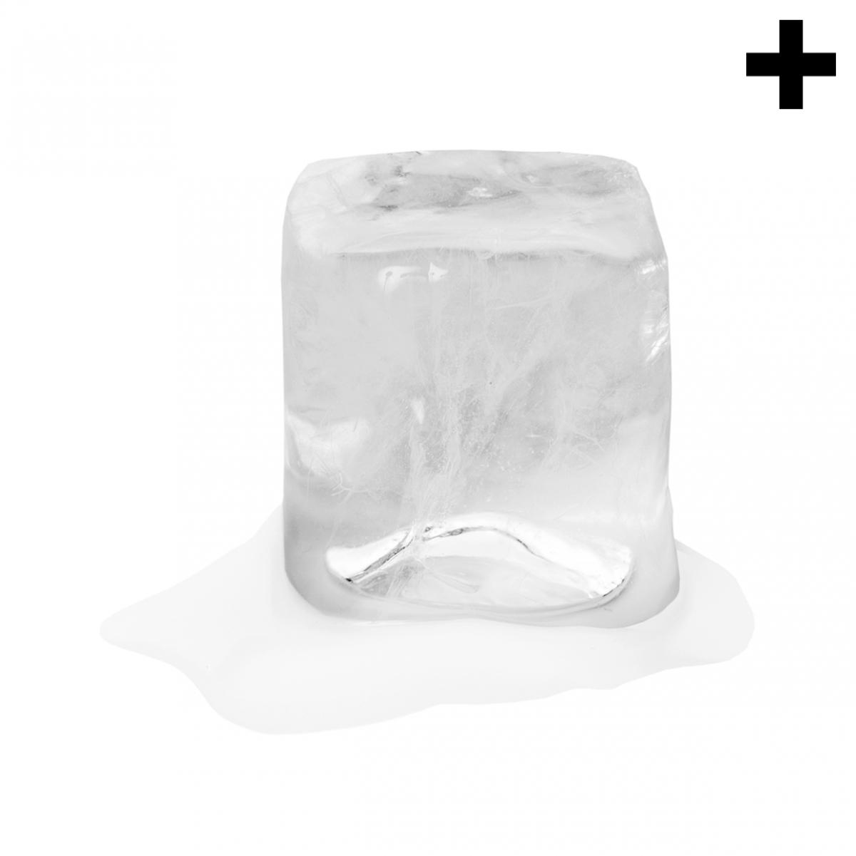 Imagen en la que se ve el plural del concepto cubito de hielo