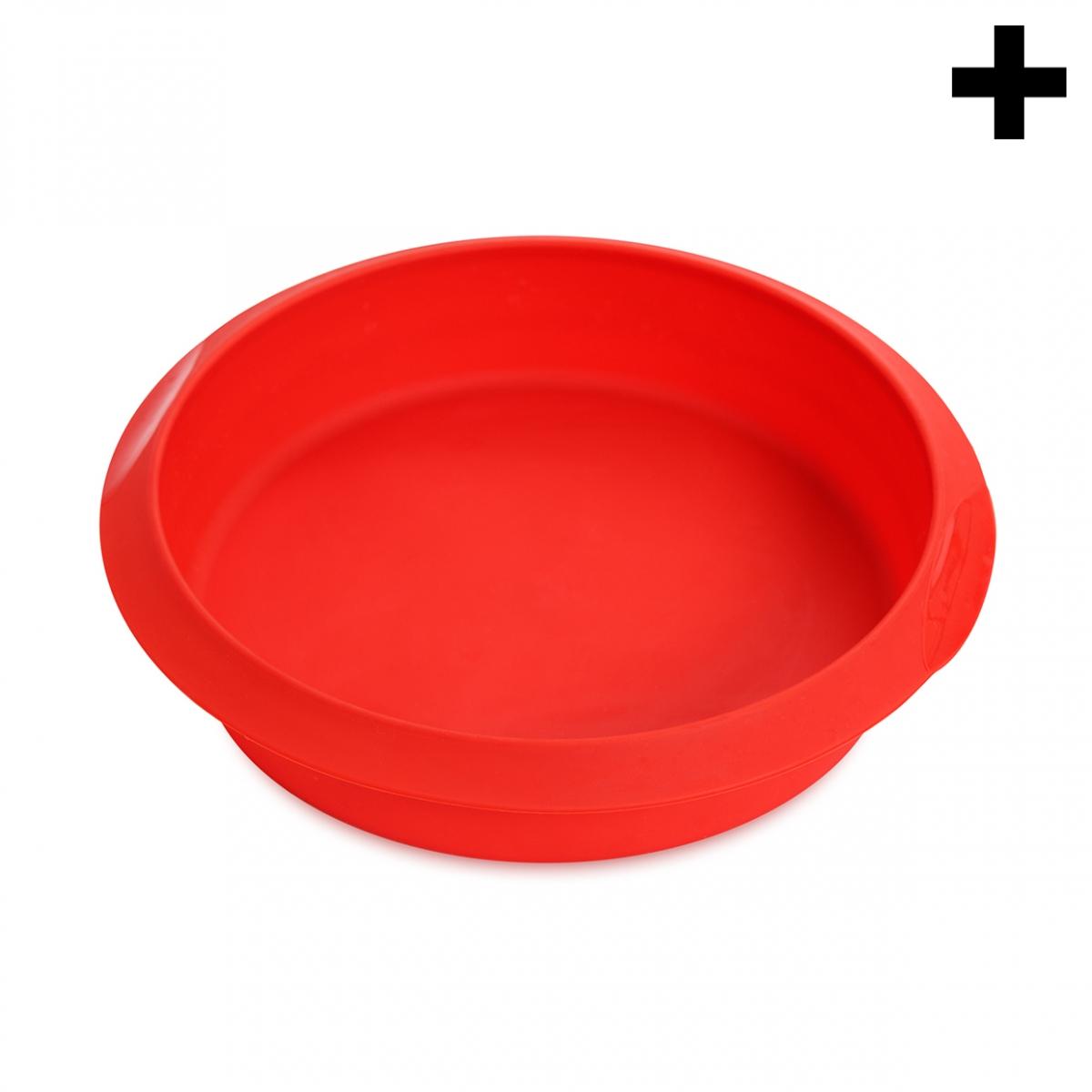 Imagen en la que se ve el plural del concepto molde de horno