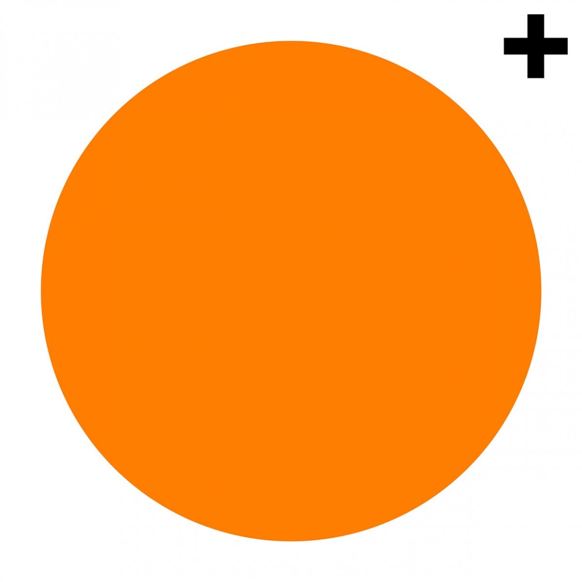 Imagen en la que se ve un círculo de color naranja