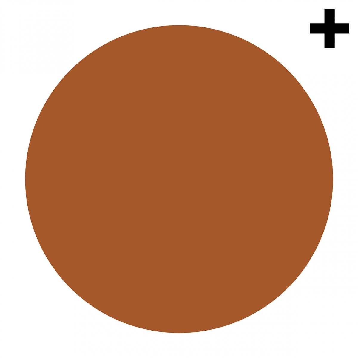 Imagen en la que se ve un círculo de color marrón