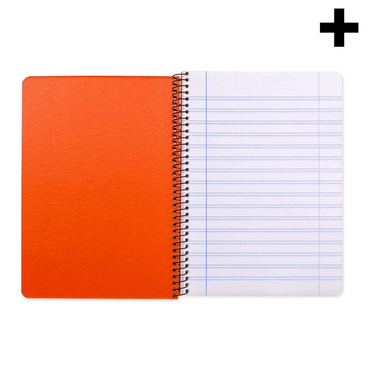 Imagen en la que aparece el plural del concepto cuaderno