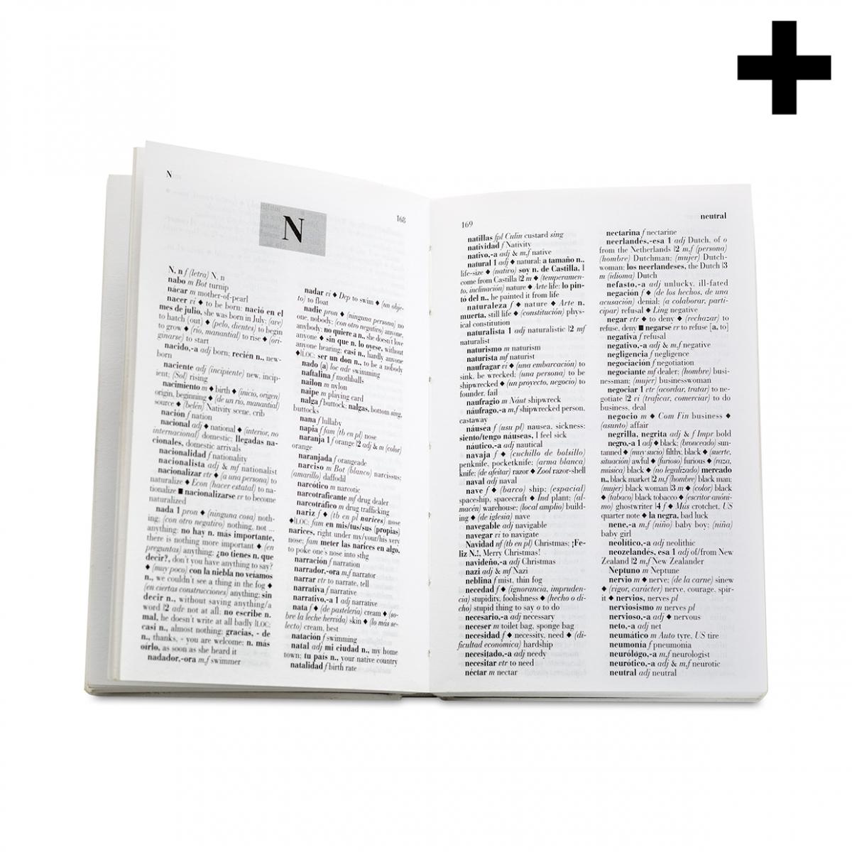 Imagen en la que se ve el plural del concepto diccionario