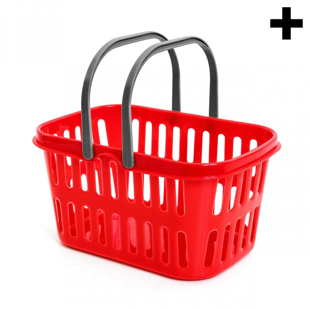 Imagen en la que se ve el plural del concepto cesta de la compra