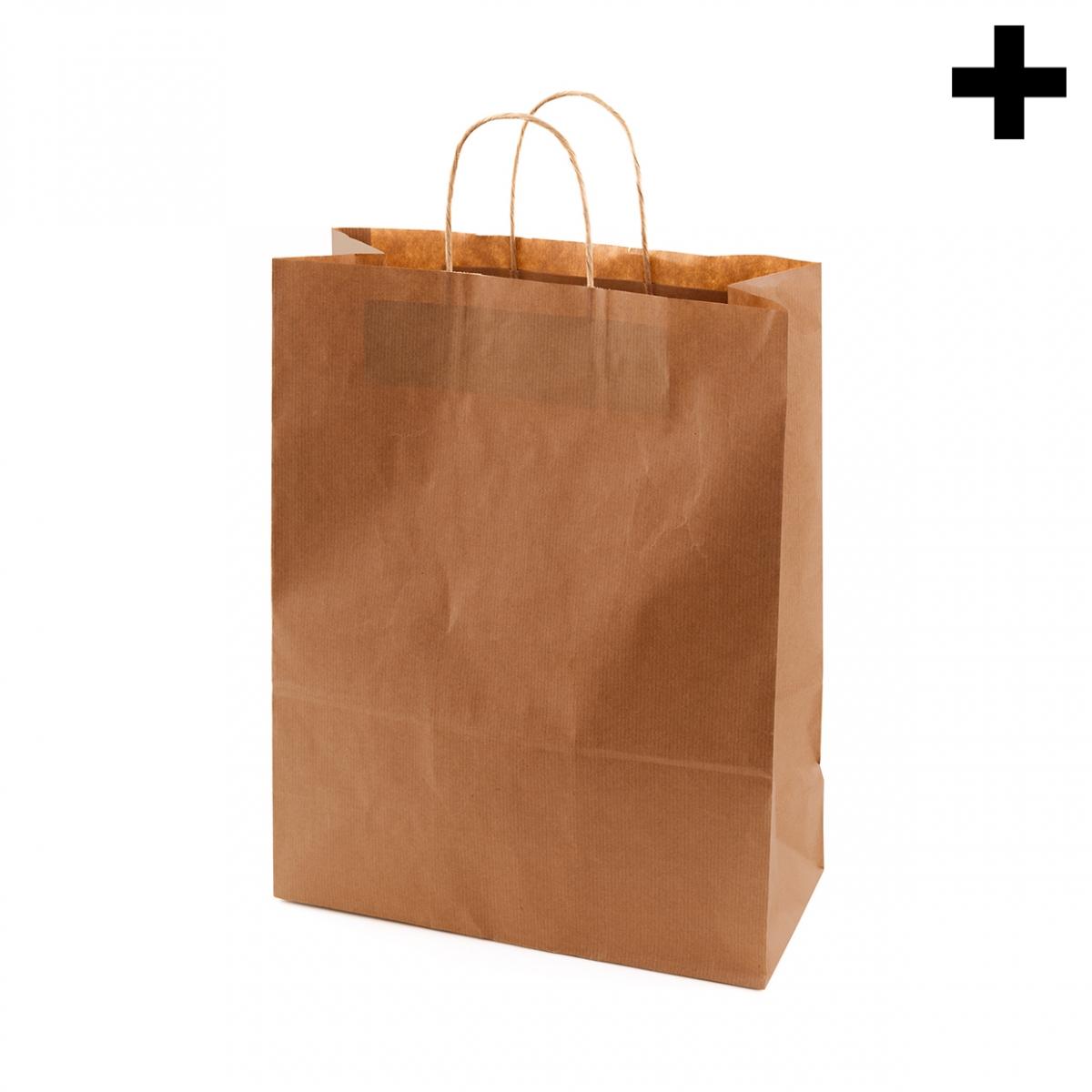 Imagen en la que se ve el plural del concepto bolsa de papel