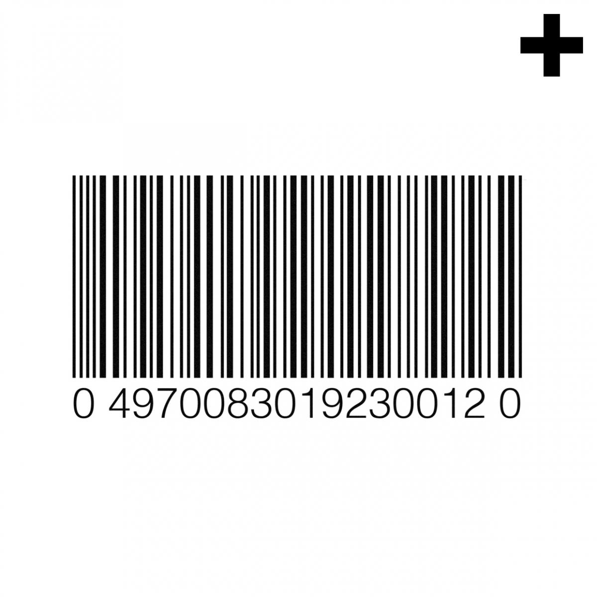Imagen en la que se ve el plural del concepto código de barras
