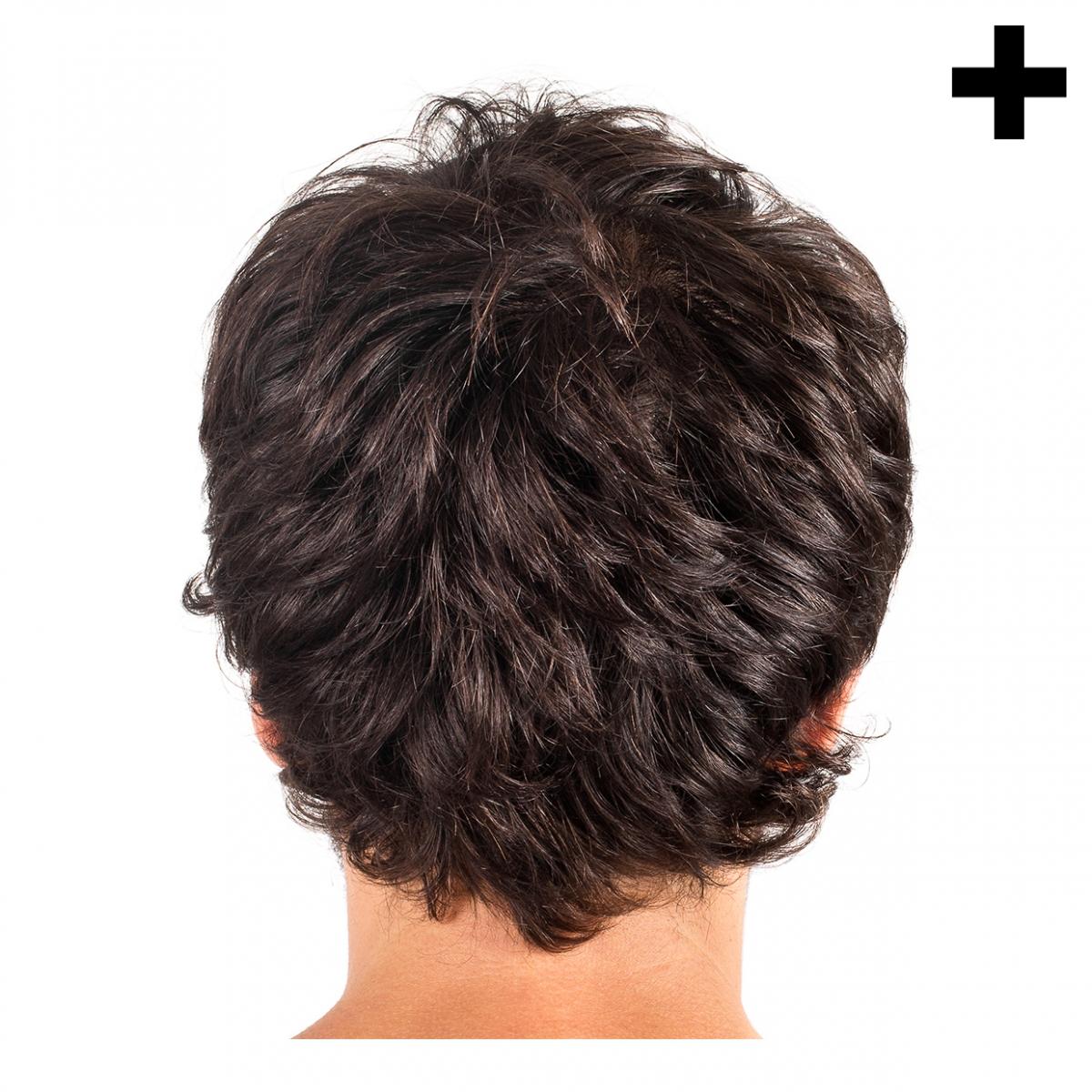 Imagen en la que se ve el plural del concepto pelo de chico